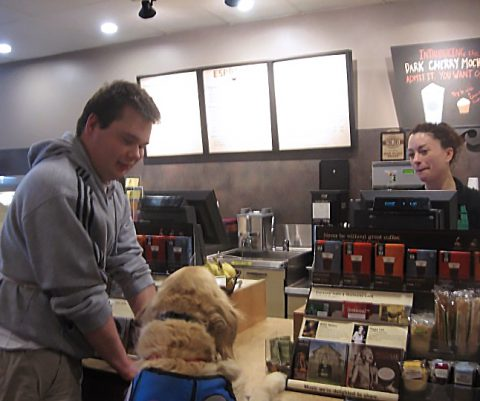 Service dog handing money to a cashier while the owner holds on to the counter